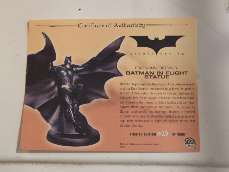 Batman Begins in Flight Statue DC Direct P7290029