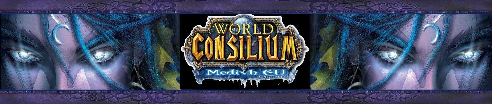 La guilde Consilium