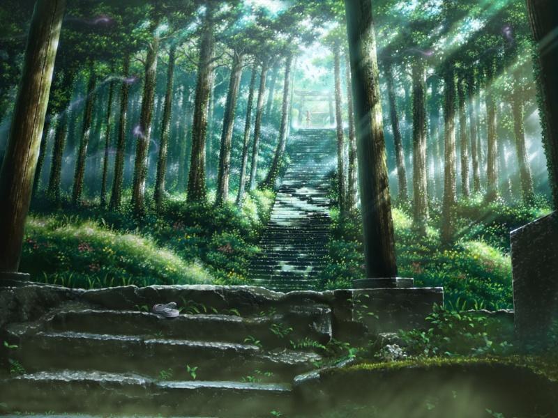 Entrada da Floresta Kusaka10
