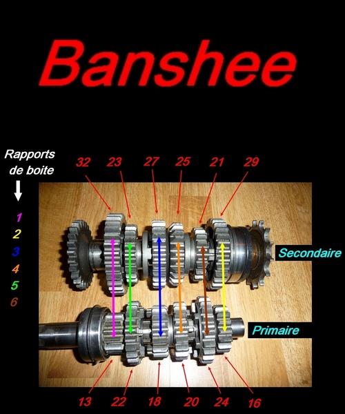 Boite de vitesse Banshee / RDLC + boite longue et courte Untitl14