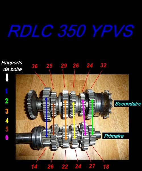 Boite de vitesse Banshee / RDLC + boite longue et courte Untitl15