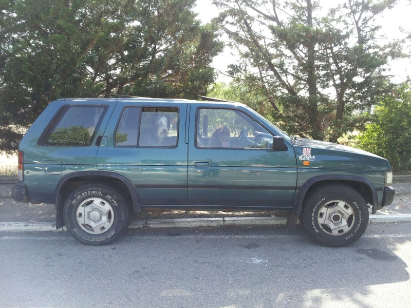 KING CAB D21 + TERRANO I D21 - Page 7 26601010