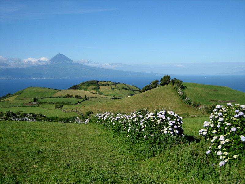 Açores en fin juin - mi-juillet Saojop10