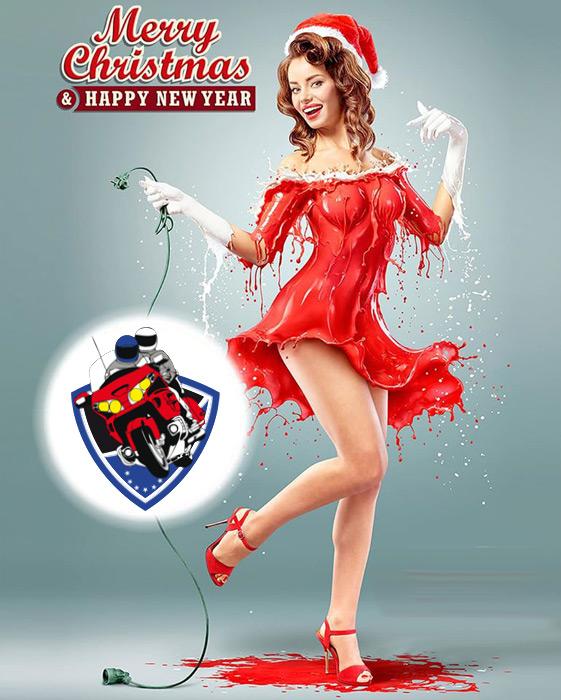 Bonnes fêtes de fin d'année Pinup10
