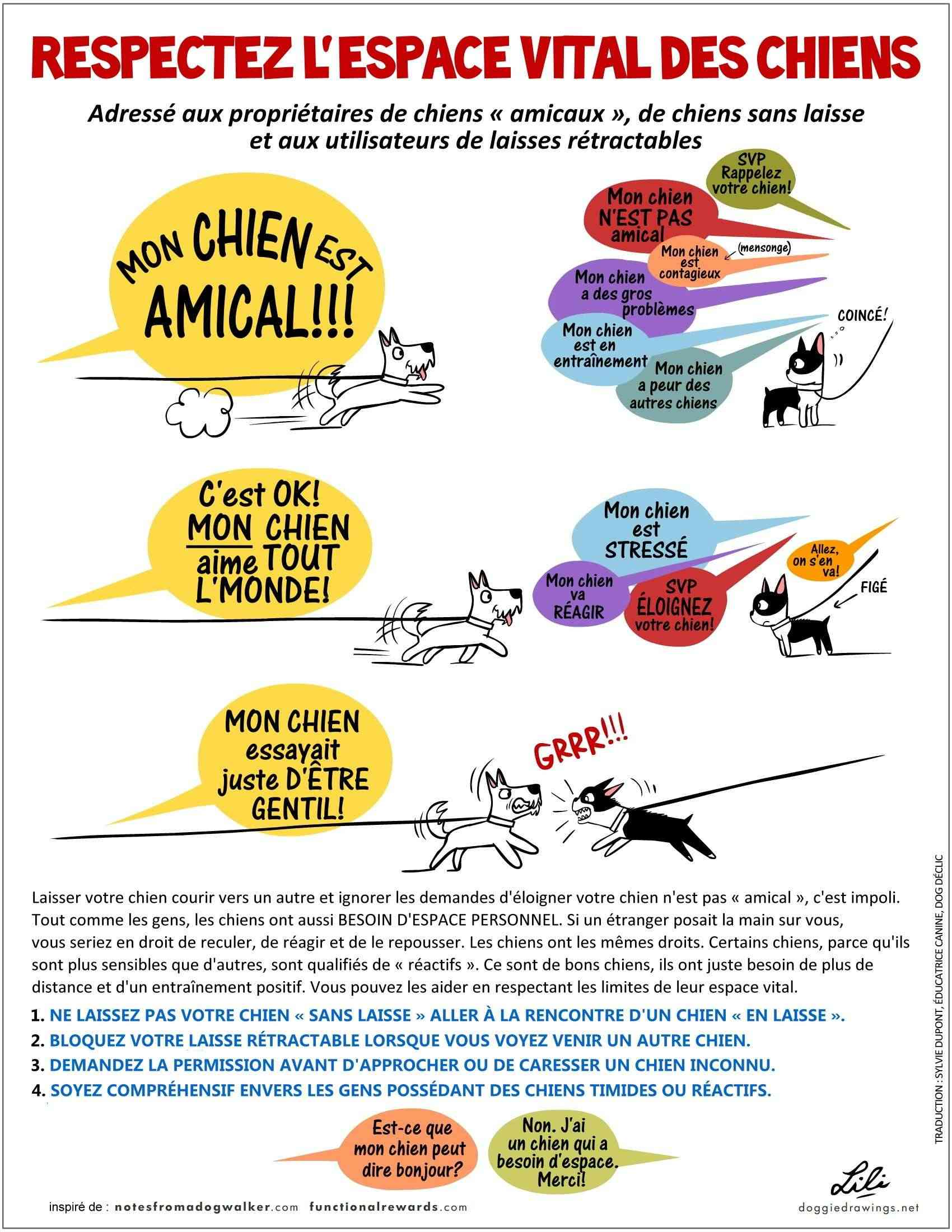 DINOS - Dogs In Need Of Space - Chiens qui ont besoin d'espace Dinos-10