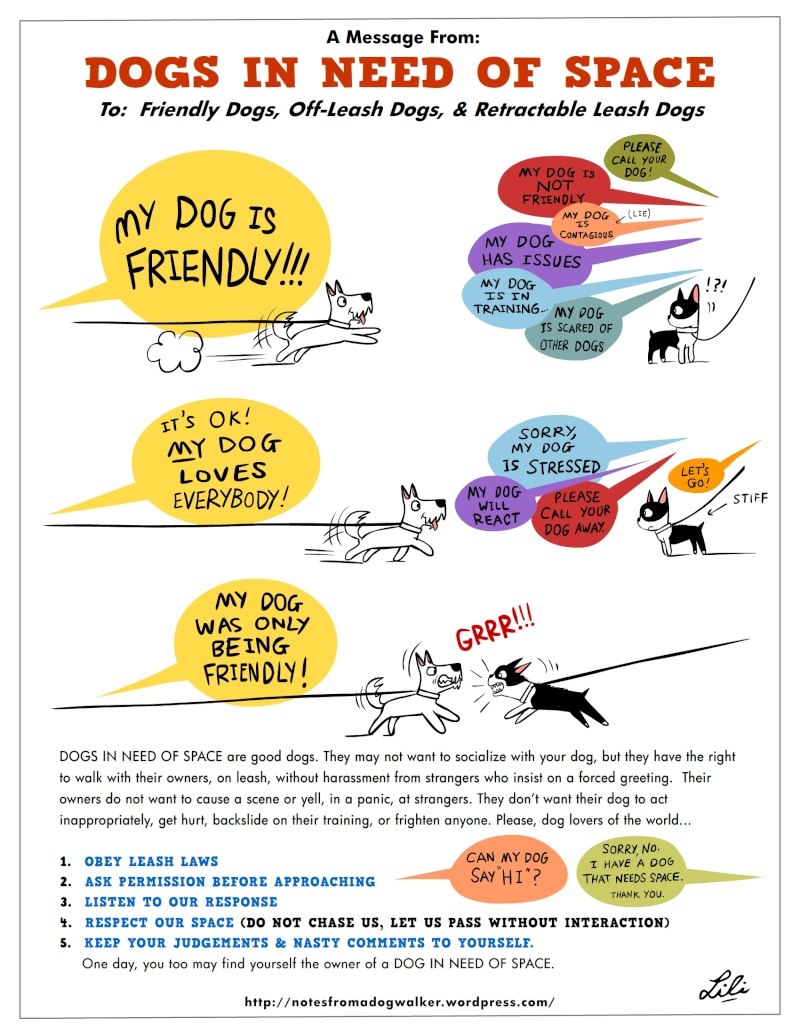 DINOS - Dogs In Need Of Space - Chiens qui ont besoin d'espace Dinos110