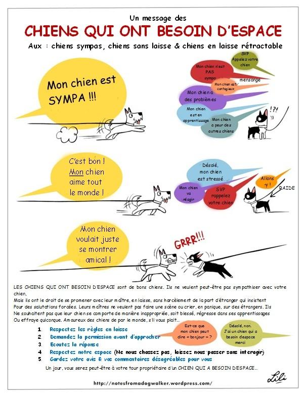 Socialiser et sociabiliser - Page 2 Dinos_10