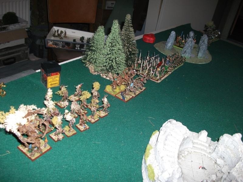 [battle-3000ts] elfes sylvains contre HB Dscf2724