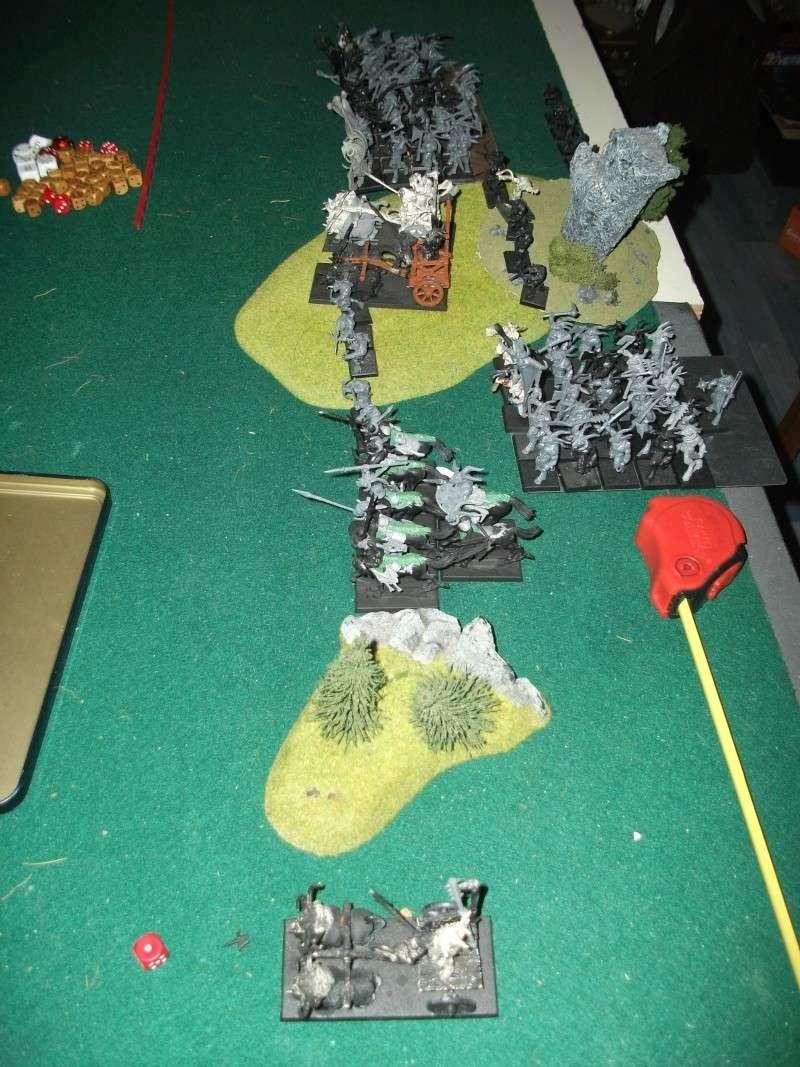 [battle-3000ts] elfes sylvains contre HB Dscf2725