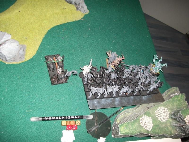 [battle-3000ts] elfes sylvains contre HB Dscf2726