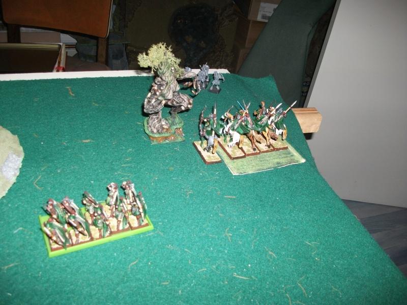 [battle-3000ts] elfes sylvains contre HB Dscf2728