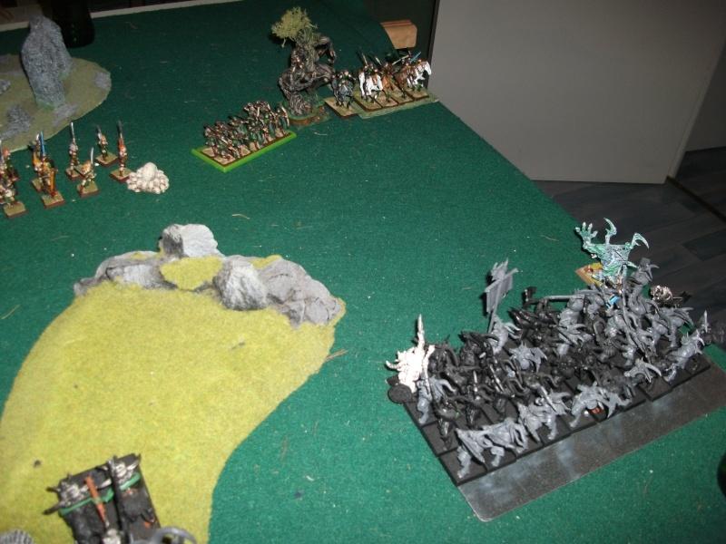 [battle-3000ts] elfes sylvains contre HB Dscf2729