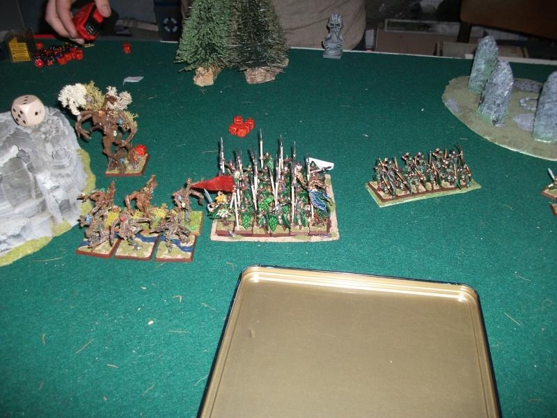 [battle-3000ts] elfes sylvains contre HB Dscf2730