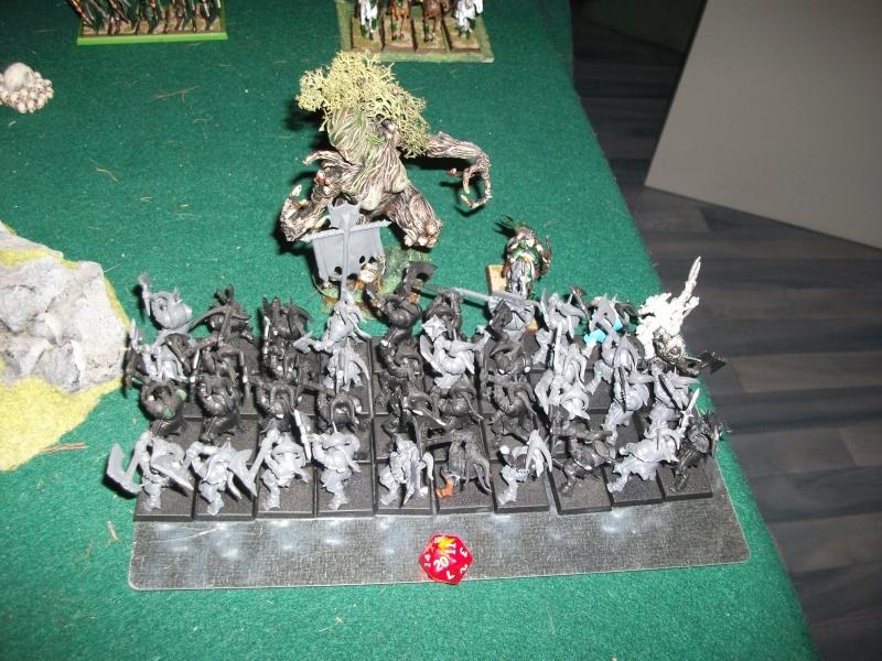 [battle-3000ts] elfes sylvains contre HB Dscf2732