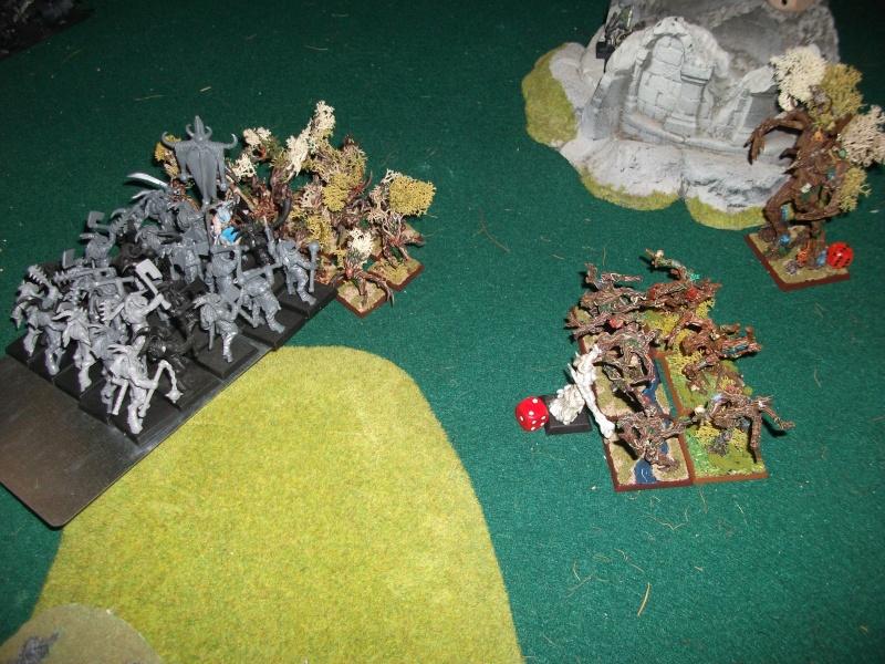 [battle-3000ts] elfes sylvains contre HB Dscf2733