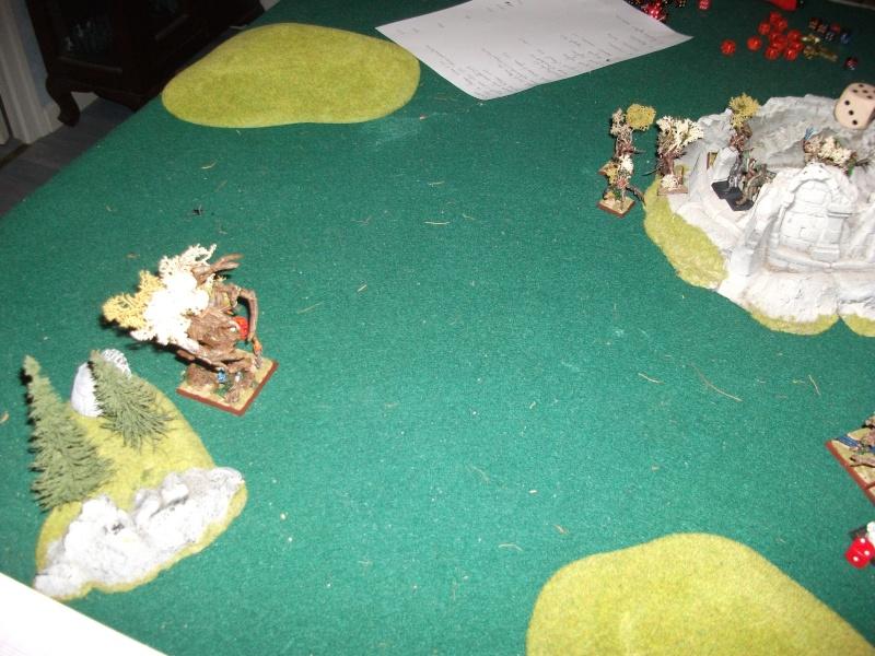 [battle-3000ts] elfes sylvains contre HB Dscf2734