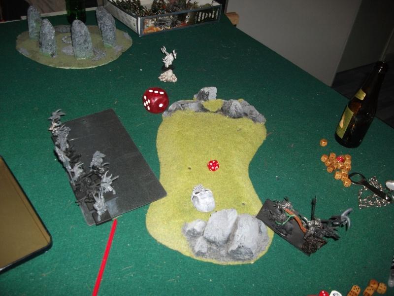 [battle-3000ts] elfes sylvains contre HB Dscf2736