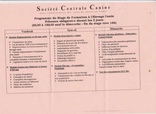 Le Certificat de Capacité à l'Elevage Canin Photo_35