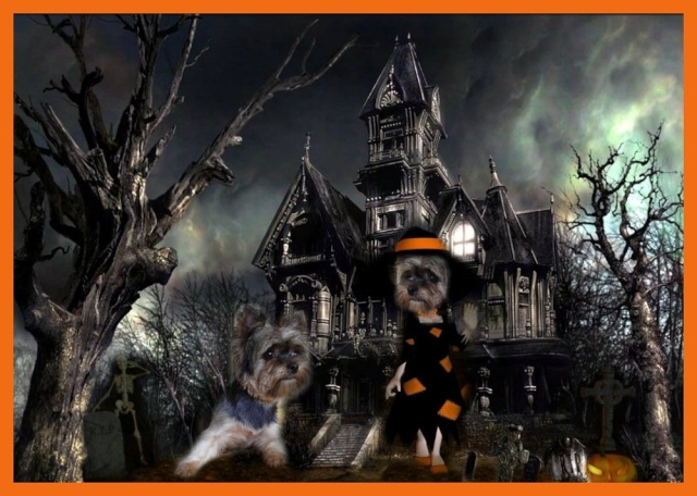 Montages pour HALLOWEEN Images10