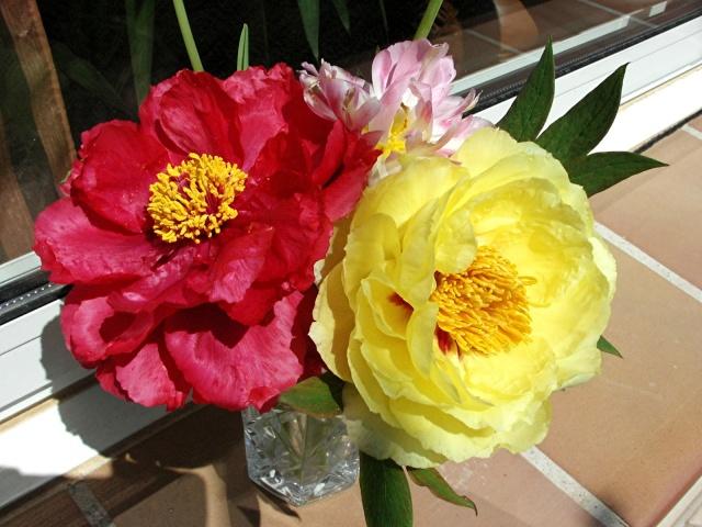 Fleurs de maëlie Kif_1711