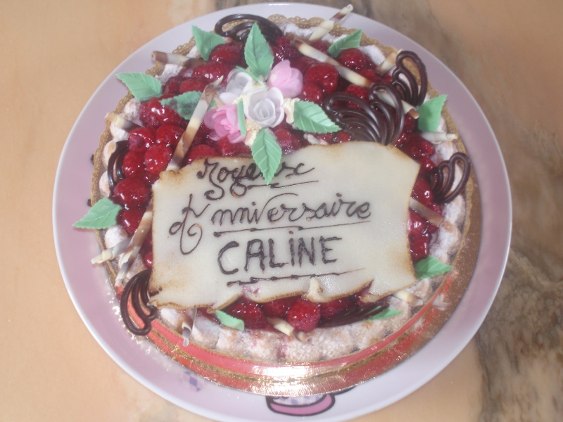 Joyeux anniversaire Caline - Page 2 Dsc04210