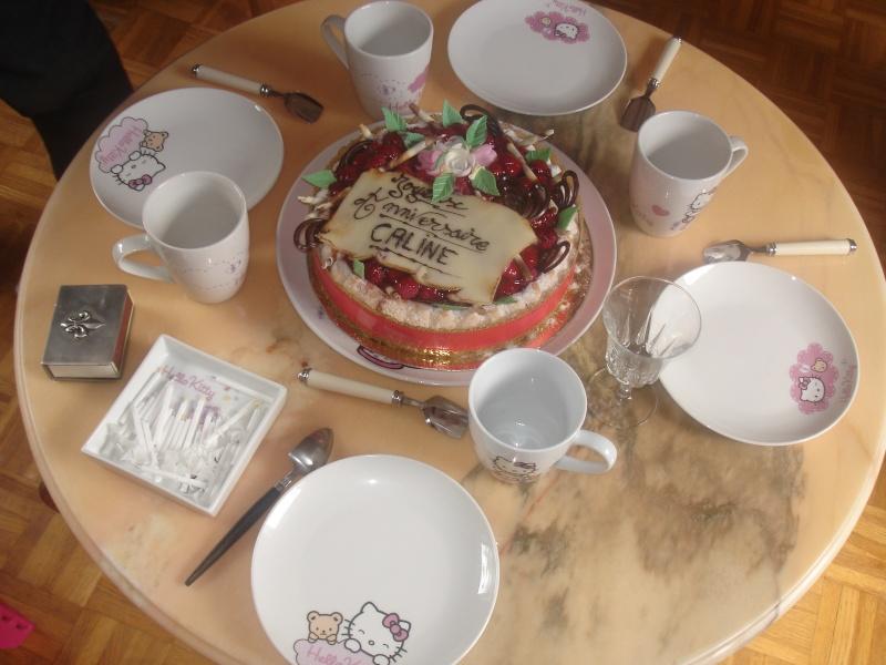 Joyeux anniversaire Caline - Page 2 Dsc04211