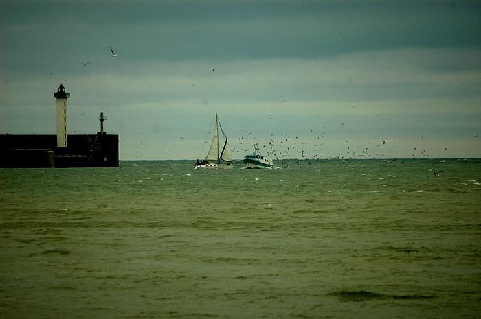La côte d'opale Dsc_2511