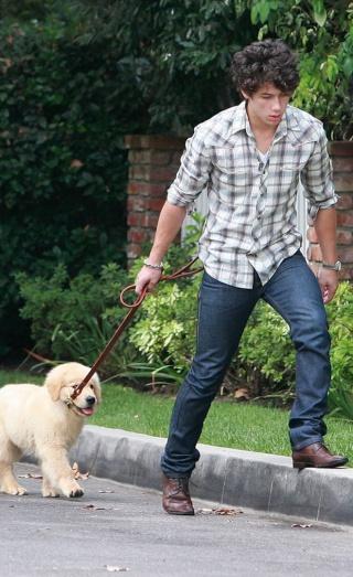 "Nick paseando kon su perrito ""Elvis"" 1cak6711"