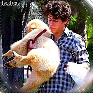"Nick paseando kon su perrito ""Elvis"" 28650810"