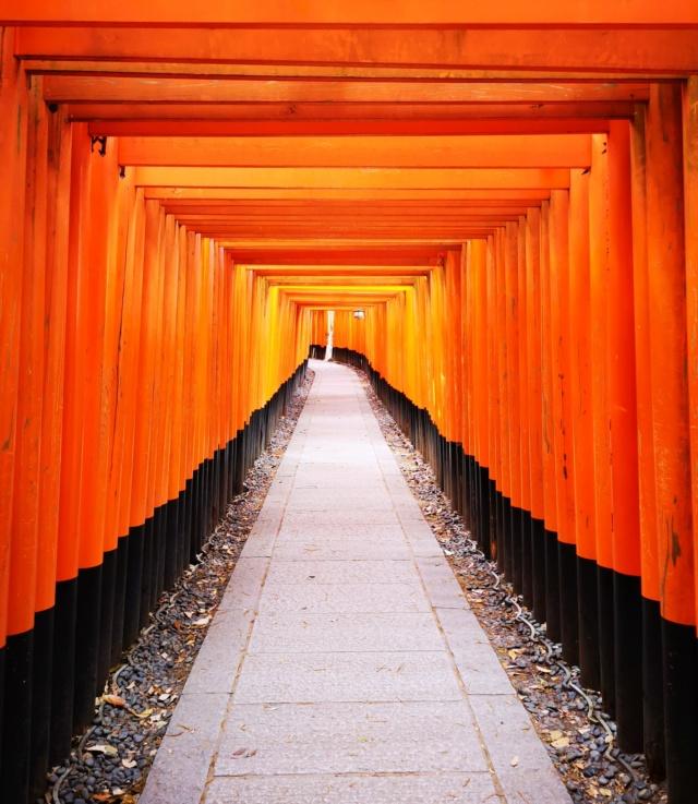 """""""Expérience : Japon"""", by Raion Fotor_22"""