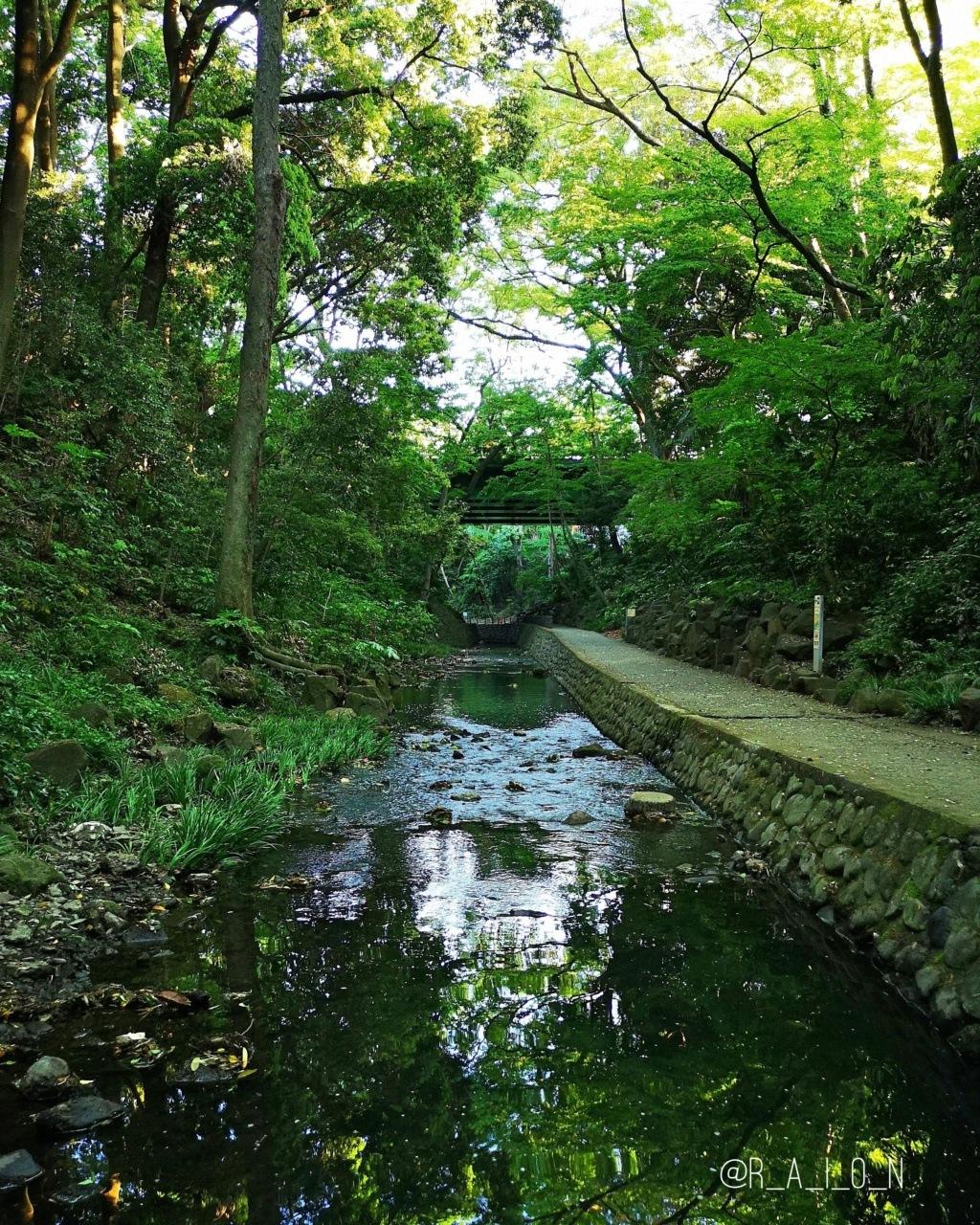 [LIEU] Todoroki Valley  Fotor_25