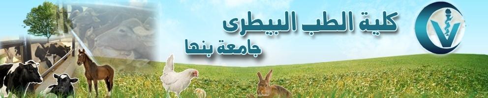 موقع كلية طب بيطرى مشتهر- جامعة بنها