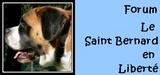 CROQUETTES D ESPOIR - les news* Sbl_5010