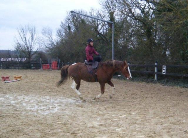 Une cavalière pratiquant, entre autres, l'équitation en amazone Aquita12