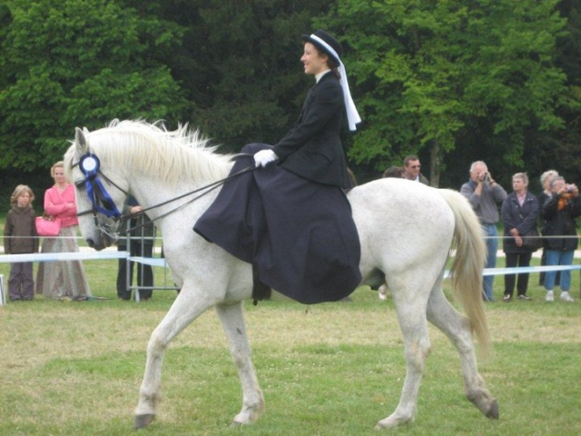 Une cavalière pratiquant, entre autres, l'équitation en amazone Damons10