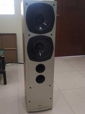 Tannoy Saturn S10 speaker (Used) B5946010