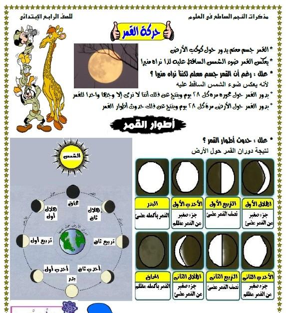 مستر أحمد حمدى والنجم الساطع فى علوم الصف الرابع  310