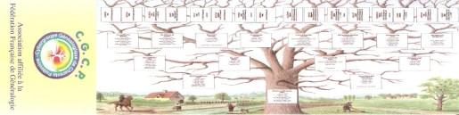 Histoire / Archéologie / Généalogie 072_5110