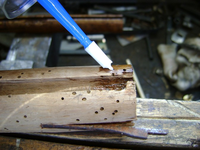 Après le bois attaqué par les vers, le bois ruiné par les vers! Dsc06244