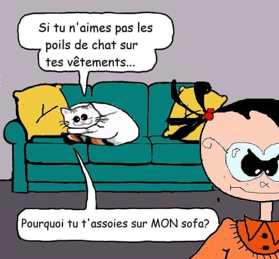 Semaine du Blougiboulga Chat_s10