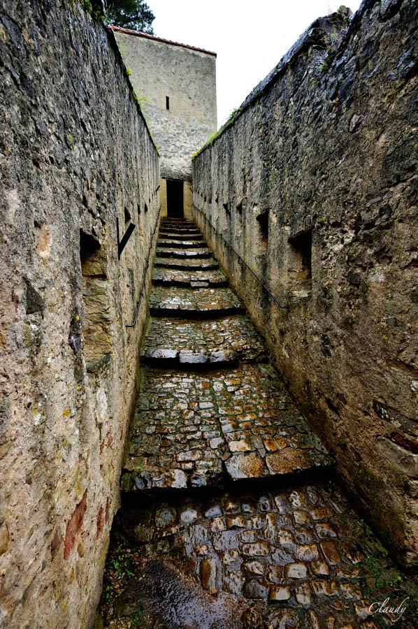 16 juin 2012 : Sortie Château de Malbrouck et de Sierck, point de vue au Stromberg - les photos - Page 2 12061616
