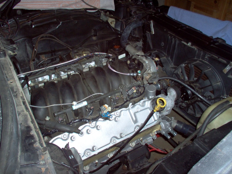 73 CHEVELLE SS PICS - Page 3 Chevel12