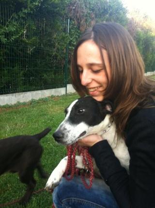 PERDITA - 8 mois - Femelle croisée chien de chasse blanche & tâches noires 31962110