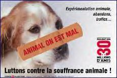 """""""Animal on est mal"""" : Message choc contre des pratiques qui choquent ! (Fondation 30 millions d'amis) Animal10"""
