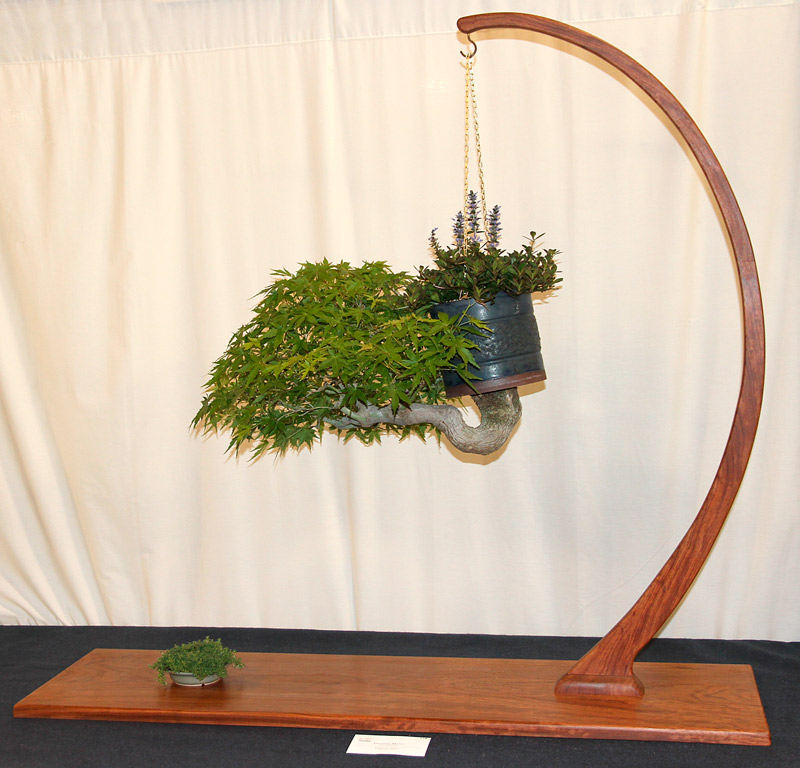 OFFICIAL 3RD US NATIONAL BONSAI EXHIBITION RESULTS Finest17