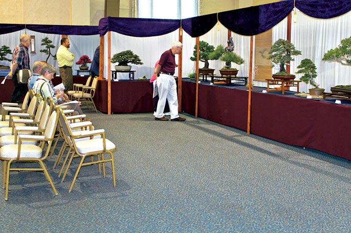 SUBMIT PHOTOS FOR US NATIONAL BONSAI EXHIBITION View-111