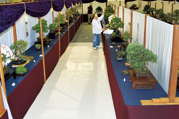 SUBMIT PHOTOS FOR US NATIONAL BONSAI EXHIBITION View-211