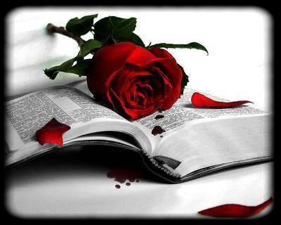 L'Amour est bonté... 17284310