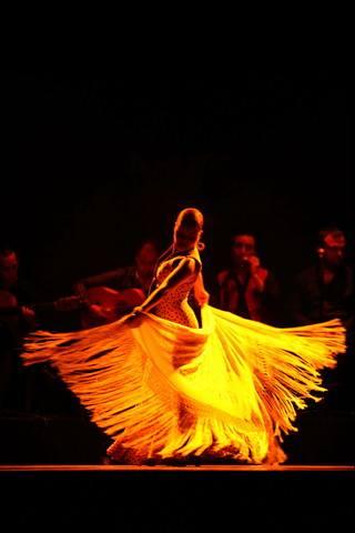 Flamenco Flamen10