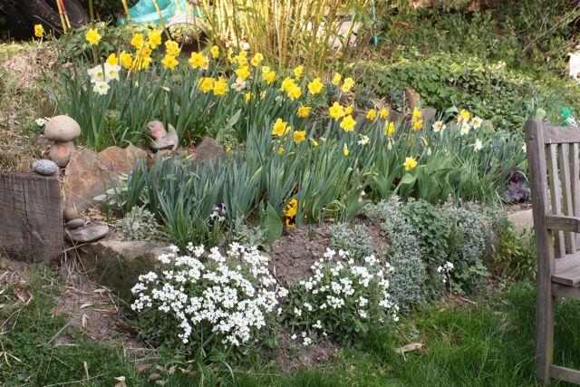 Un Nerf de printemps. Printe10